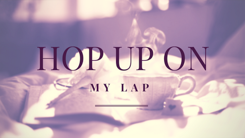 A Kiss from Heaven – Hop Up on My Lap