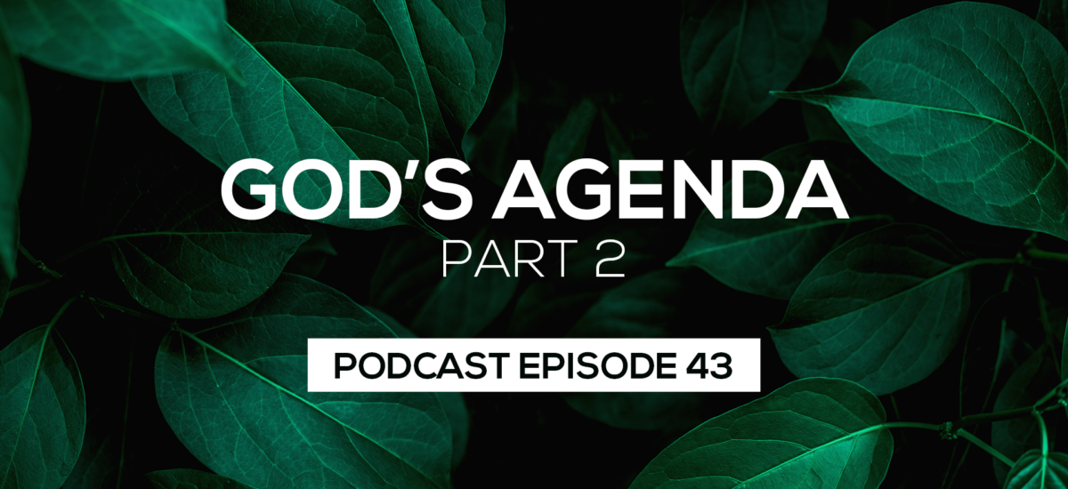 Episode 43: God's Agenda Part 2